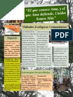 Corregida Noticia Accion y Comunidad