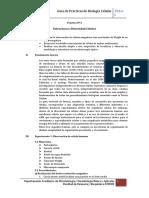Práctica Nº 3 Biol celular.docx