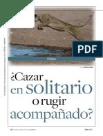 caso_PUMA