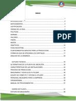 parte industrial DECORATION.pdf