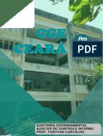 Aula 00 - Auditoria (Governança e Análise de Risco I)