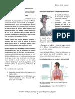Tipeo Fisiologia Del Aparato Respiratorio i