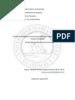 Estudio de Factibilidad Para Una PYMES.doc