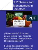 Tomato - Nutrient Problems & Their Management
