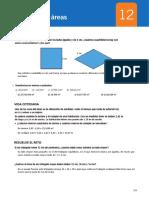 12 Perímetros y Áreas.pdf
