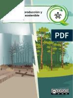 1_ Politica de produccion y consumo sostenible.pdf