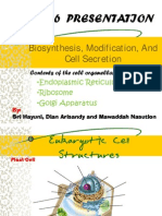 Biosyntesis Modification, And Cell Secretion 1