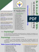 Psych Brochure Draft