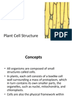 03.CELL STRUCTURE AND ORGANELLES-KRT-1.ppt