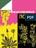 lekarstvennye_rastenia_dikorastuschie.pdf