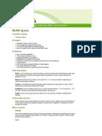 Factsheet - Buffel Grass