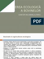 Bovine Ecolocic 2018