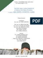 Ceru Băcăinţi.pdf