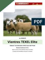 20190907 Texel Elite Catalogo Final