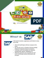 0.SAP Introduction (1)