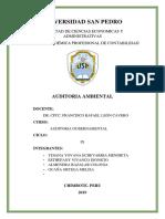 AUDITORIA-AMBIENTAL-GUBERNAMENTAL