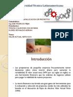 Presentacion VAN.pptx