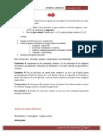 13. Perfil lipidico