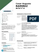 curriculum-vitae-.docx