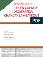 PRESENCIA DE METALES EN CUENCA HIDROGRÁFICA CHANCAY LAMBAYEQUE.pptx