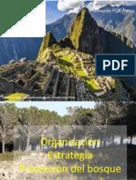 - Lunes 18 Organizacion estrategia.pdf