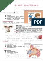 Anatomía nariz y senos paranasales