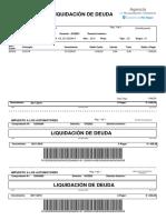 liquidacionAutomotores.pdf
