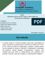 MPPEGRUPO 4 - Colecta de Dados.