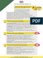 Treinamento - Bergamota.pdf