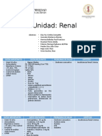 Plenaria Renal