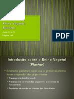 05_Briofitas.pptx