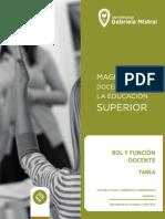 Curso Rol y Función Docente_Foros y Tarea Unidad I