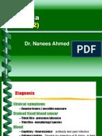 Copy of Malaria Lecture 7-12-2005