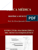 Fisica Medica Quezada