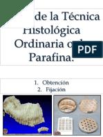tcnica_histolgica_2013.pptx