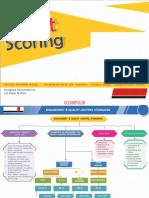 Audit SA Chart Notes for IPCC CA Inter CA Final