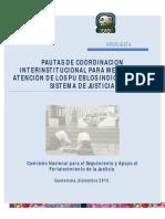 PAUTAS DE COORDINACION.pdf