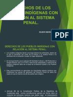Derechos de Los Pueblos Indigenas en Relacion Al Sistema Penal