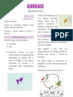 Resumo Giardia.pdf
