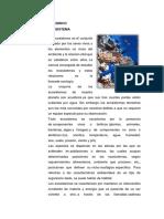 ECOSISTEMA JUEVES.docx