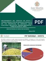 Presentacion Pip Naranja 29.03
