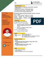 CV anyar-.docx
