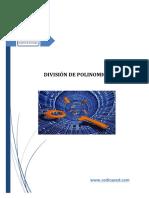 division entre polinomio