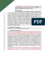 Py. Lagunillas VRI.pdf