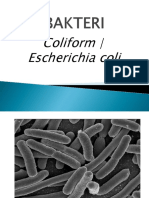 Coliform_e_colli.pptx.pptx