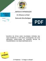 Slide Nina Rodrigues - Os Africanos no Brasil.pptx