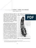 1831-Texto del manuscrito completo (cuadros y figuras insertos)-7062-1-10-20130808.pdf