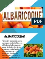 angie albaricoqe.pptx