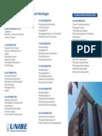 Plan Estudios Psicologia (1)
