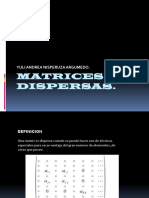 MATRICES DISPERSAS..pptx